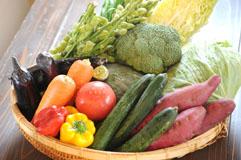 からだにおいしい!野菜をたっぷり使っています!